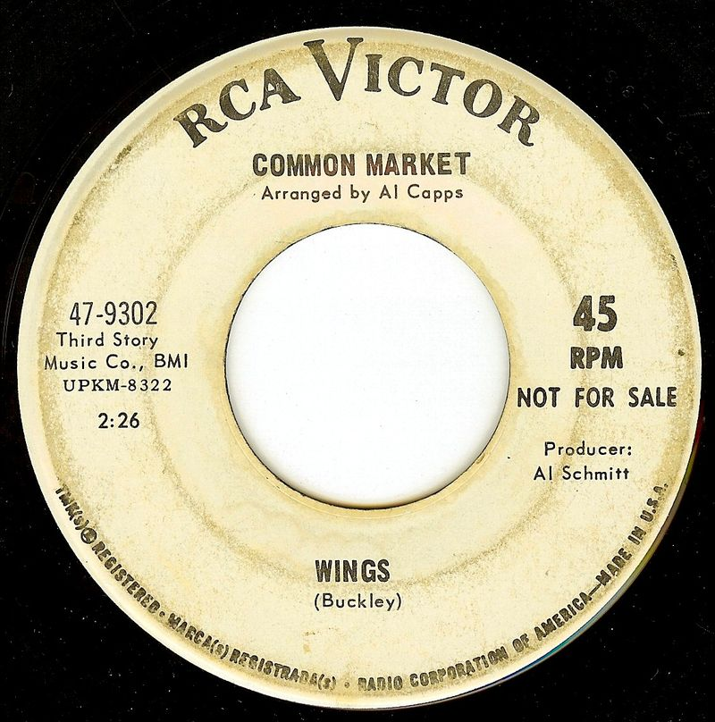 Common market wings